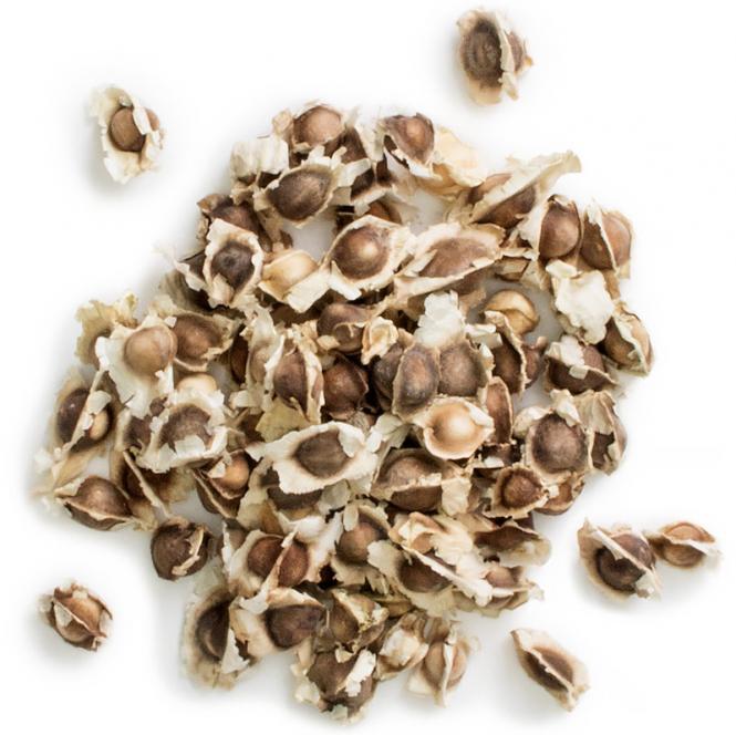 Moringa Seeds, 20 g