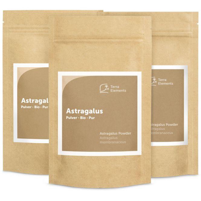 Organic Astragalus Powder, 100 g, 3-Pack